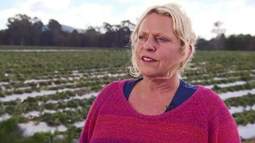 Mandy Shultz says her farm has thrown out a tonne of fruit in the last week alone.
