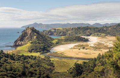 Aotea/Great Barrier Island, New Zealand