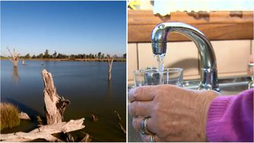 """Federal Water Minister David Littleproud said it's the government's """"responsibility to act"""" if the competition watchdog concludes commercial water speculators are driving up prices."""