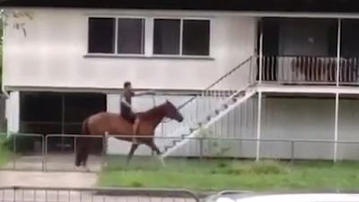 Man borrows neighbour's horse for backyard joyride