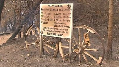 Dozens of dogs and cats have perished at the Tea Tree Gully Boarding Kennel and Cattery which was overcome by fire. (Twitter)
