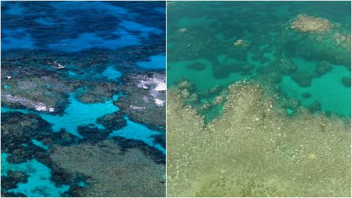 Aerial images of the Barrier reef in 1969 and 2017. (Getty Images and supplied)