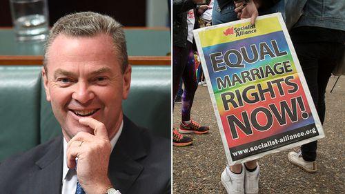 Liberals splinter over gay marriage vote