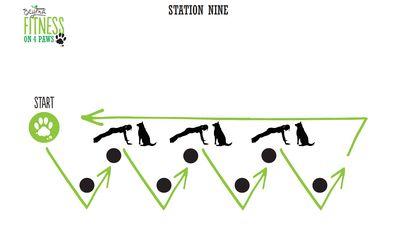 <strong>Station Nine: Pushup/Zig Zag combo</strong>