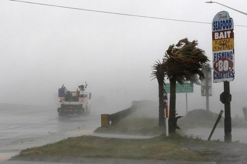 A work truck drives on Hwy 24 as the wind from Hurricane Florence blows palm trees in Swansboro North Carolina.
