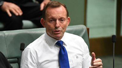 Leadership spill 'solved nothing': Abbott