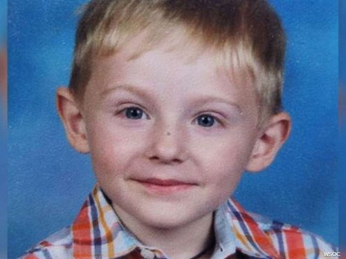 Maddox Ritch could be sleeping rough in the woods after vanishing out of the sight of his father in Rankin Lake Park, Gastonia.
