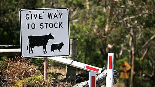 Stockman stabbed in the face with a boning knife over road sign dispute