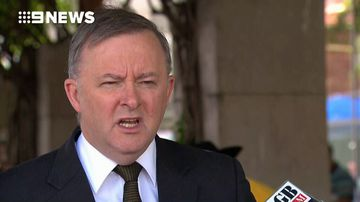 Greens leader invokes wrath of Labor