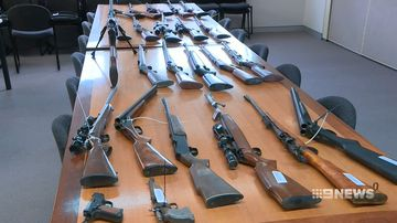 new data prompts calls for stricter penalties for 'gun thieves'