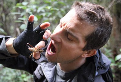 Bear Grylls eating an insect. (AAP)