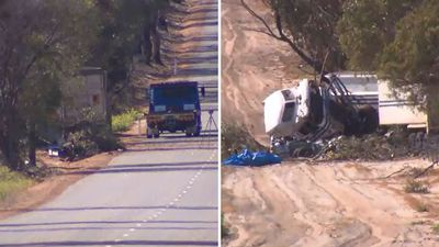 Mother and son killed in truck smash