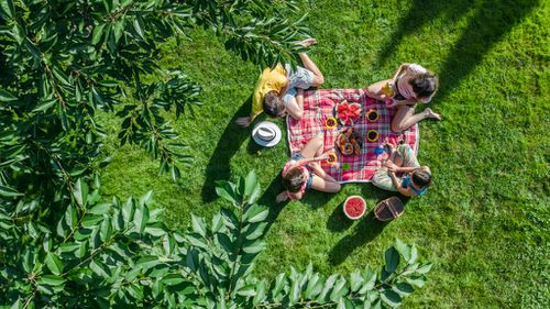 Your own French-inspired picnic