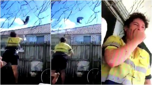 The vision shows the man cruelly launching the cat over the fence. (Supplied)