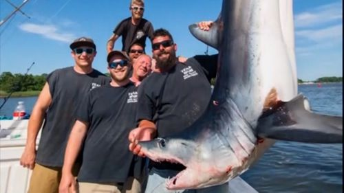 The group were fishing for mako sharks when a great white decided to join them.