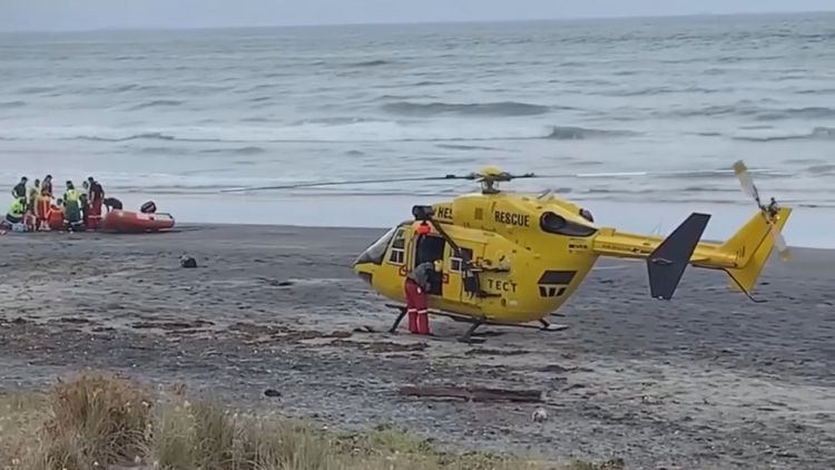 Woman dies in suspected shark attack in New Zealand