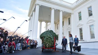 Members of the media gathered at the White House to cover the arrival of the horse-drawn Christmas tree. (AAP)