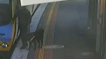 Blind commuter topples over onto train tracks