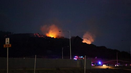 The five fires in various suburbs in Sydney's south-west were found to be intentionally lit. (9NEWS)