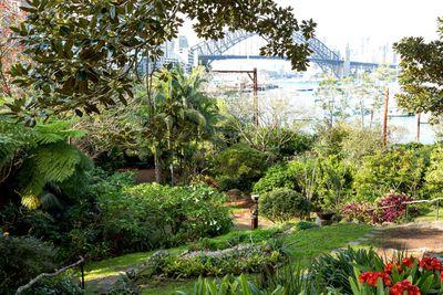 <strong>Wendy's Secret Garden, Lavender Bay</strong>