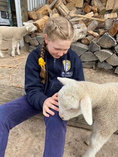 Lydia patting sheep