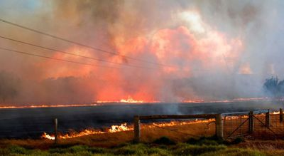 A spot fire in Cookernup was ignited after wind blew ash from the Waroona bushfire into the area.  (Tyler Ross-Clarke)