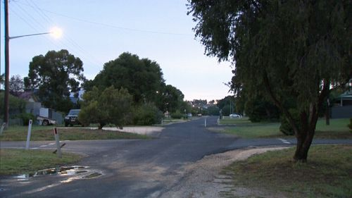 Emergency services were called to the dog attack at Greaves St, Inverell about 2.20pm. (9NEWS)