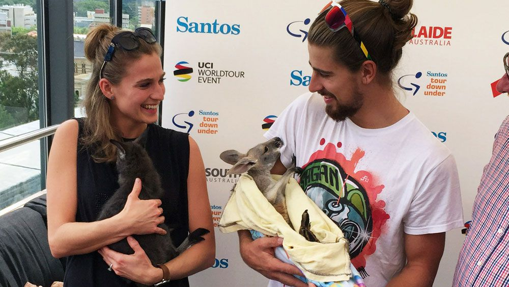 Peter Sagan and his wife Katarina with a kangaroo during his time in Australia. (AAP)