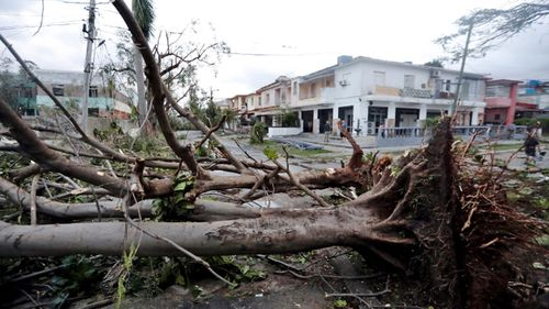 Trees were felled and cars thrown into buildings as winds reached speeds of up to 320km/h.