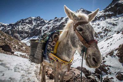 3. Mount Toubkal, Morocco