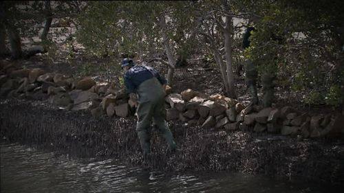 Ms Cullen's body was found near a Sydney fishing club. (9NEWS)