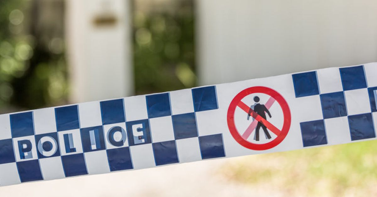 Boy 13 found dead after disappearing while swimming on Gold Coast hinterland – 9News