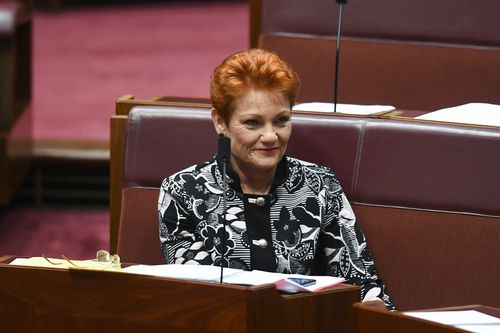 In a major embarrassment for the Morrison Government, the Coalition supported Hanson's motion before it was narrowly defeated.