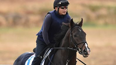 IN PICTURES: 2015 Melbourne Cup guide (Gallery)