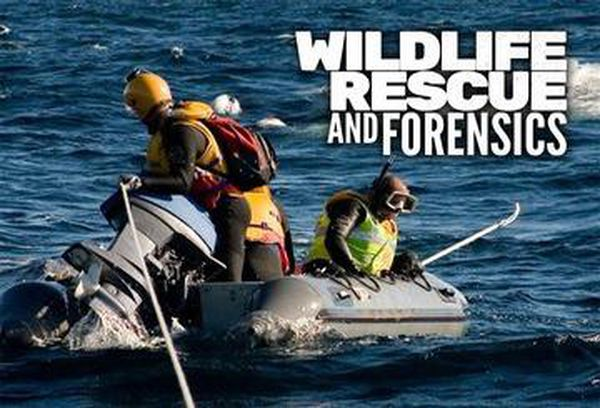 Wildlife Rescue & Forensics