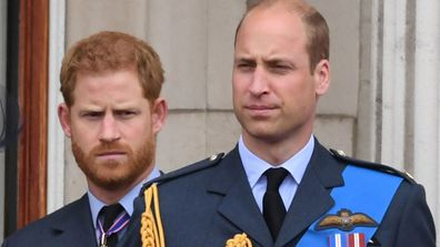 Prince Harry Prince William 2
