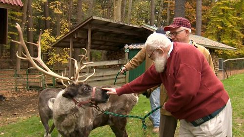 """They're all handpicked by Santa himself – he only needs to make sure they're doing it """"just right"""". (9NEWS)"""