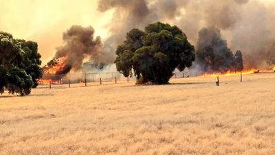 Winds have pushed the fire at Whiteman Park in a north easterly direction towards Lord Street. (Elle Mitaros, 9NEWS)
