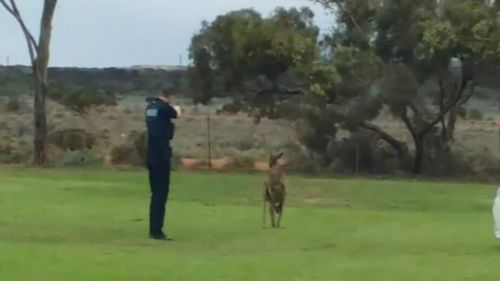 A South Australian police officer is at the centre of an online backlash after being filmed shooting an injured kangaroo multiple times in an attempt to put it down.
