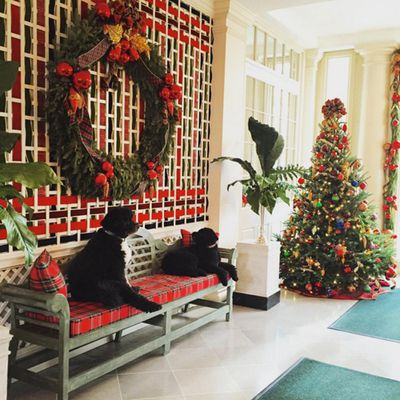"""According to FLOTUS' Instagram, """"volunteers spend several busy days transforming the [White House] for the holidays."""" Serious office decoration swag."""