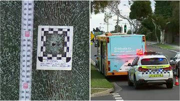 A bus driver in Mount Waverley was startled yesterday when a suspected bullet was fired at his window.