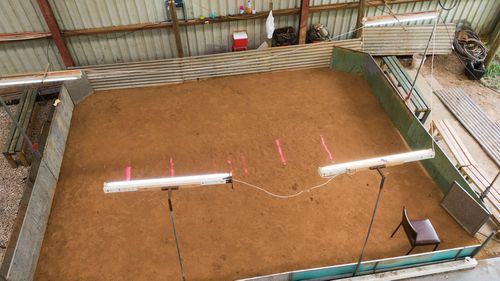 They found a cockfighting ring and $100k in cash.