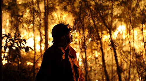 Get set for more ferocious bushfires in NSW, report says