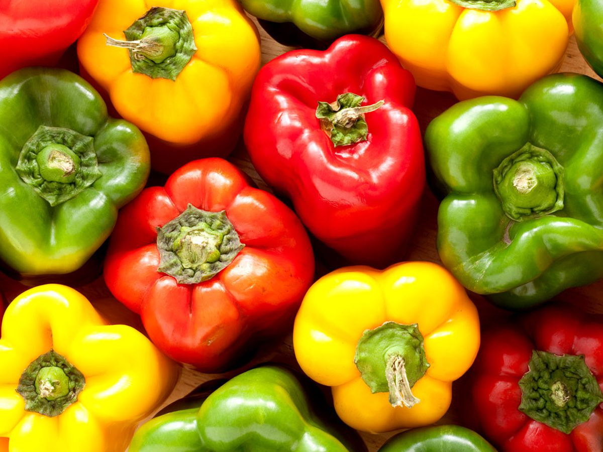 Which Is Better For You Green Or Red Capsicum 9coach