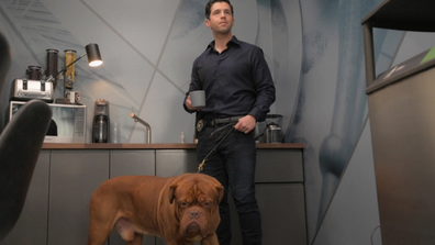 Crime-fighting duo's don't get more wholesome than 'Turner and Hooch'.