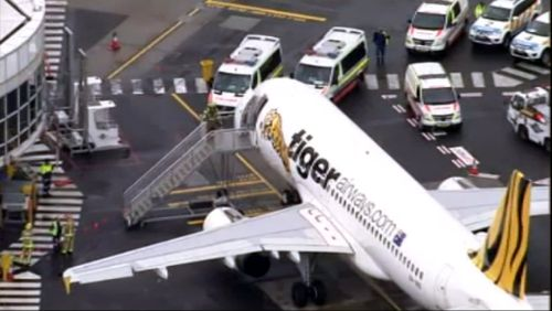 Engineering issue grounds Tiger plane after potenital fumes in the cabin