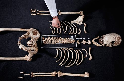 Cheddar Man is a human male fossil skeleton, unearthed in 1903 in Gough's Cave at Cheddar Gorge, Somerset, UK. (AAP)