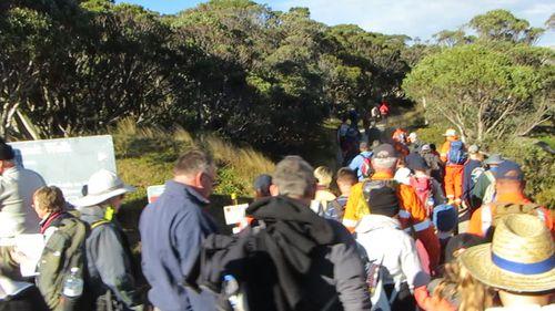 Children ascended Australia's tallest mountain in the Mt Kosciuszko Wheelchair Summit Challenge.