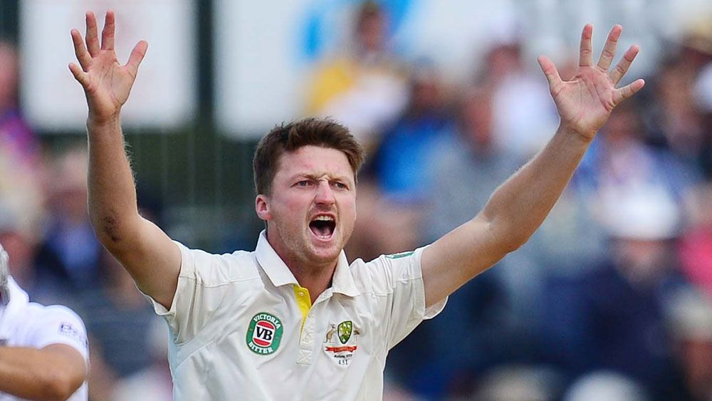 Bird flying high after cricket injury hell