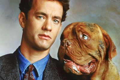 This slobbery French Mastiff helps Tom Hanks fight crime and find love. His portrayer, Beasley, died three years after the film's 1992 release, at the age of 14.